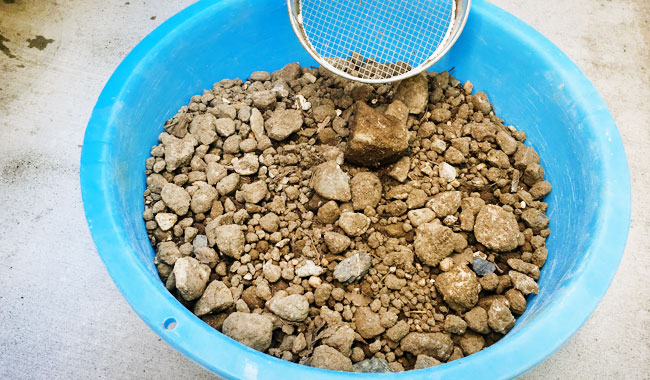 庭をほったら出てきた石たち